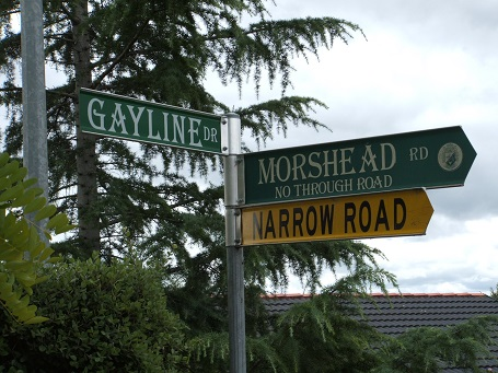 All that is left of the Narellan Gayline Drive-In a street sign. (I Willis, 2008)