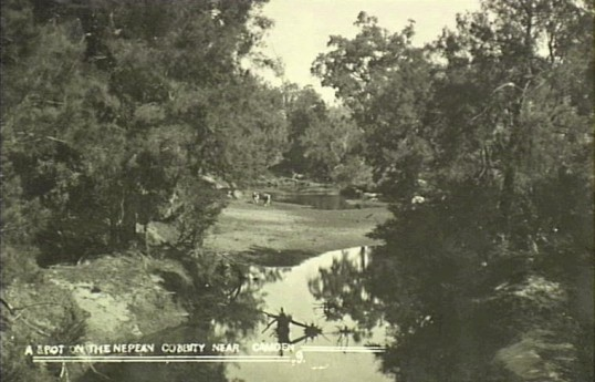 Nepean River near Cobbitty 1900 (Camden Images)
