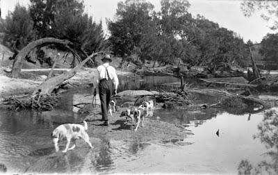 Nepean River below Cowpasture Bridge 1900  (Camden Images/CA Poole)