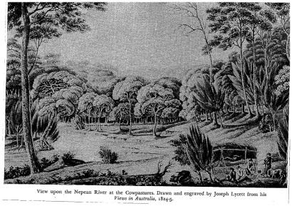 Nepean River Cowpastures[1]