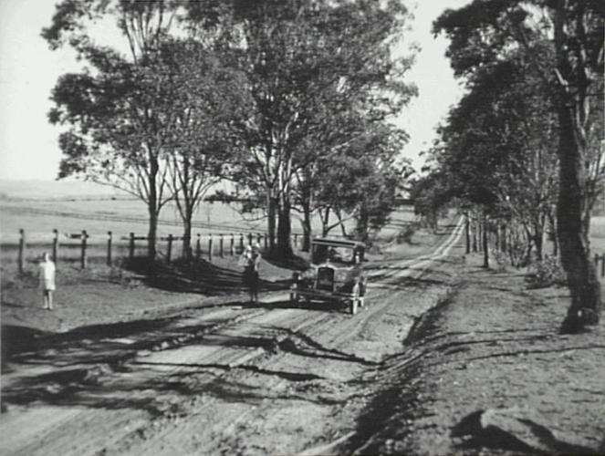 View along Cobbitty Road in 1928