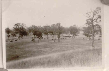 Tents in the bush Narellan Military Camp 1942 A Bailey