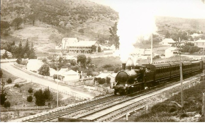 Picton Railway Station c1900s LDavey