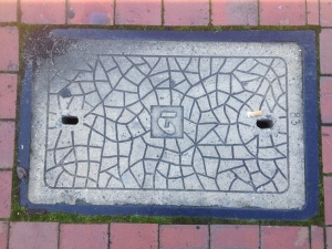 Telstra Inspection Cover 2016 Argyle St Camden