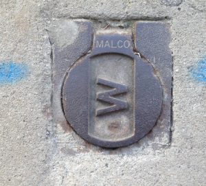 Malco Cover for Water Argyle Street Camden 2016 (I Willis)