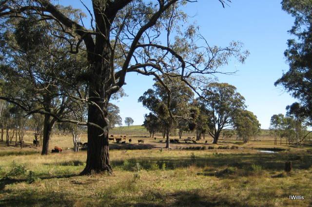 mount-gilead-farmland-2016