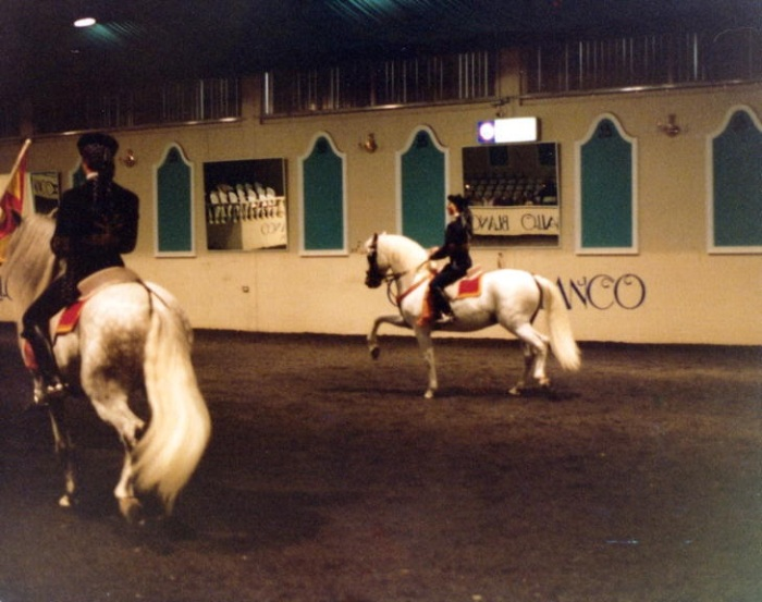 El Caballo Blanco Spanish Horse Show Catherine Fields 1980s (Camden Images)