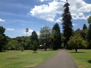 Path through Sydney Botanic Gardens 2015 IWillis