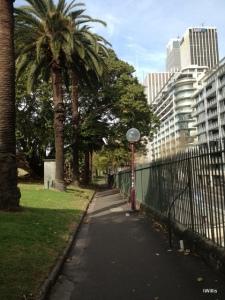 Tarpeian Way Sydney Botanic Garden 2015 IWillis