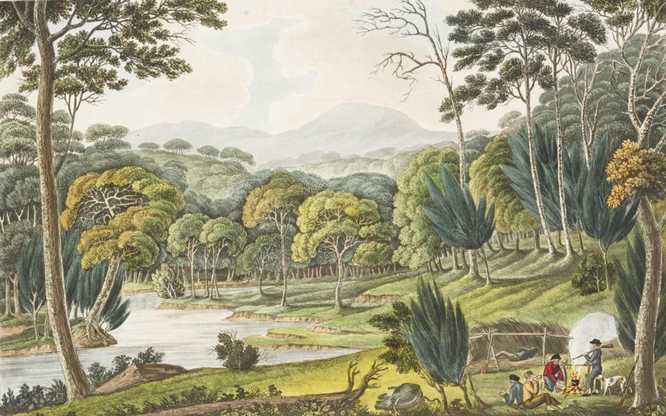 1824-view-of-cowpastures-joseph-lycett