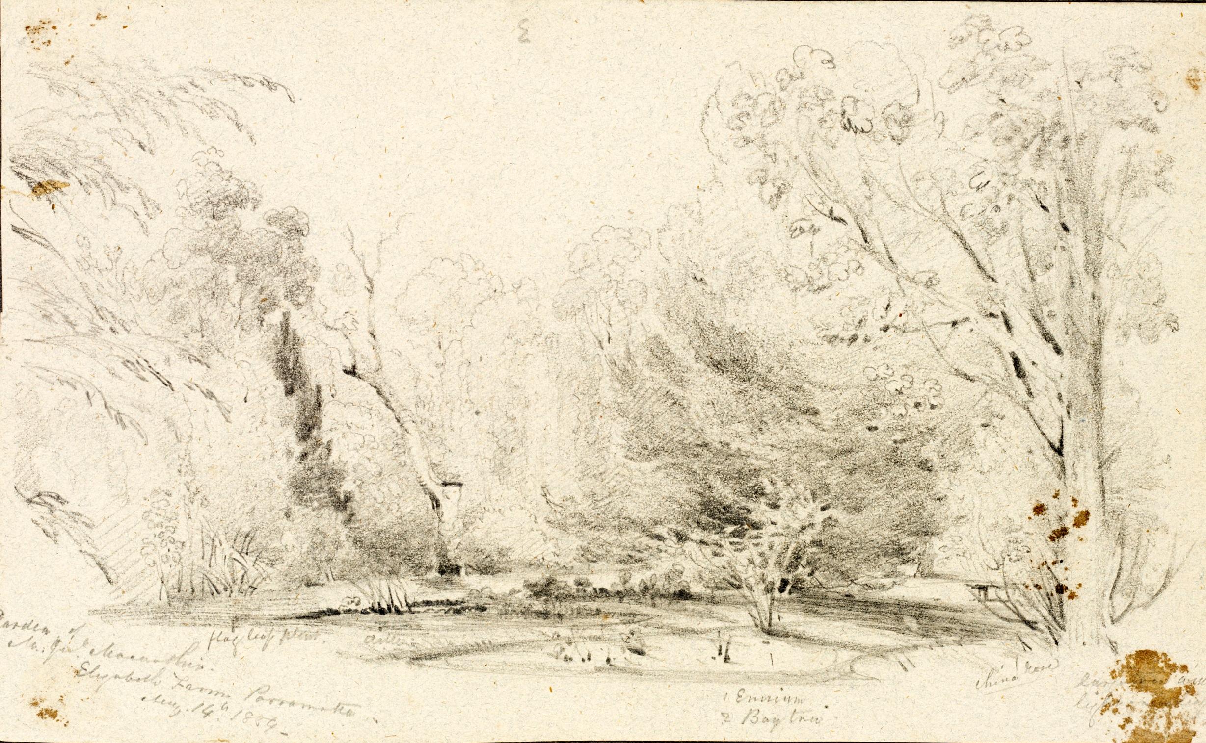 Parramatta ElizabethFarm CMartin 1859 Pencil SLNSW