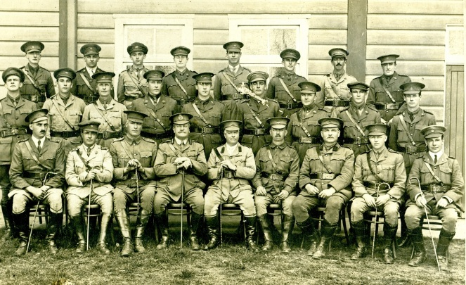 1917 Officers of Light Horse Camp, Menangle. European War CIPP lowres