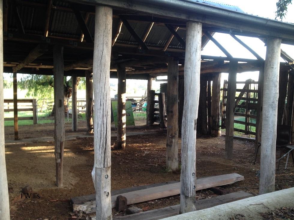 Camden Community Garden shed