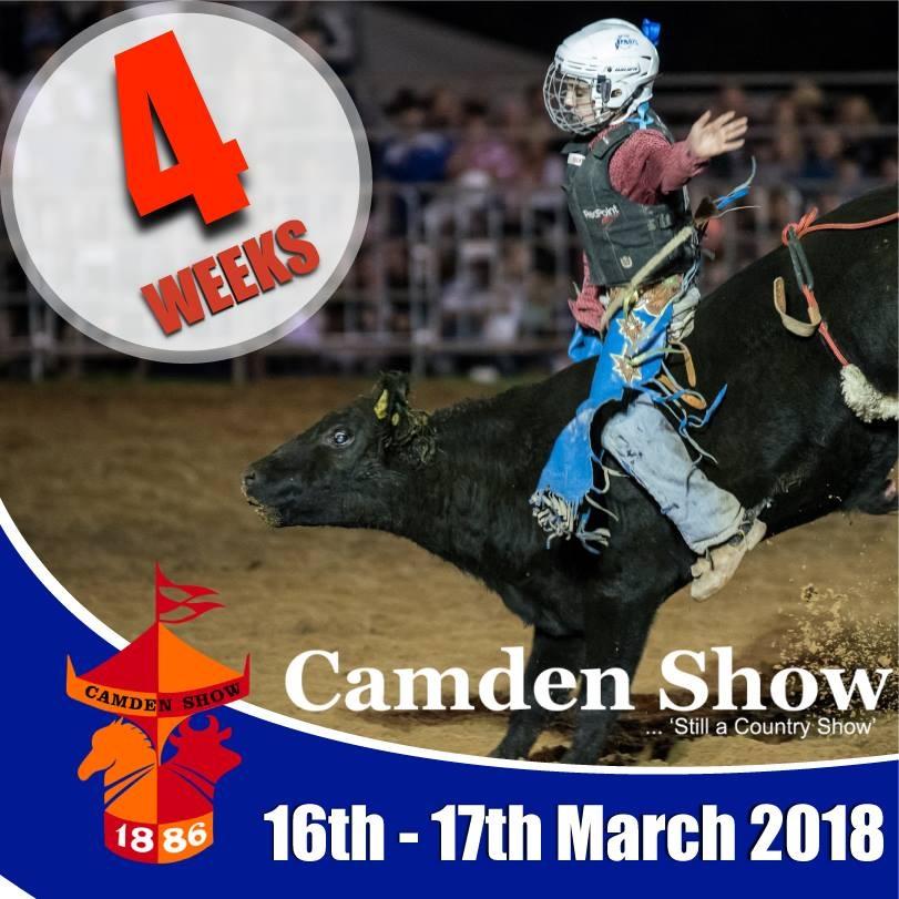 Camden Show 2018 promo