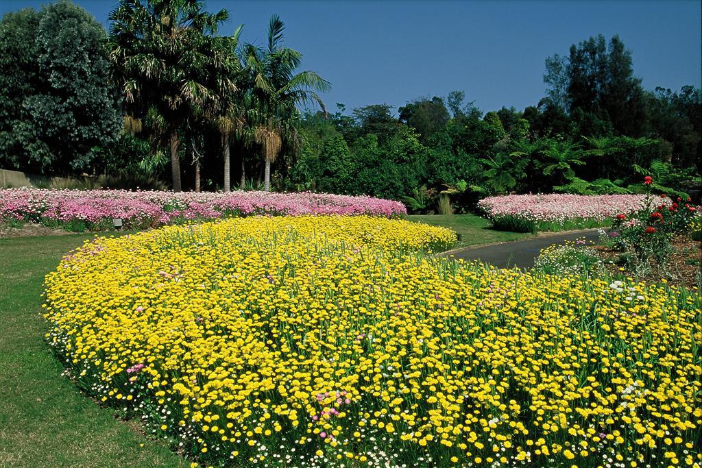 mt_annan_botanic_garden2