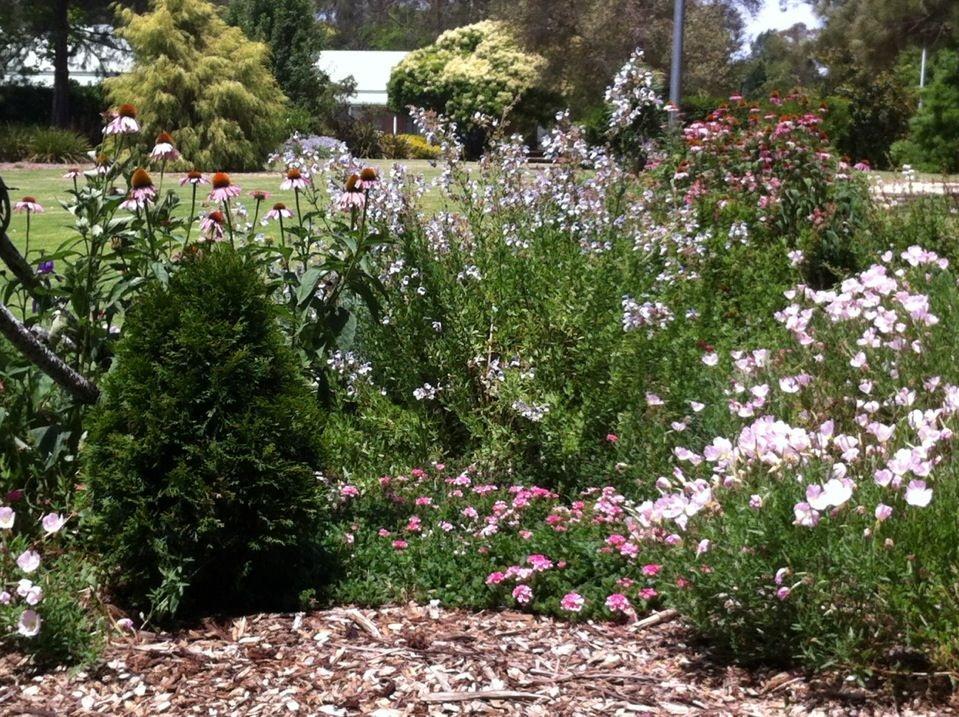 Picton Botanic Garden 2017 Pinterest