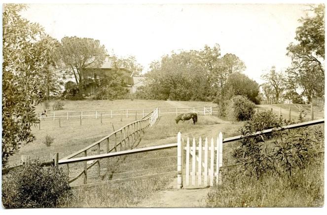 camden st johns church paddock 1907 cipp