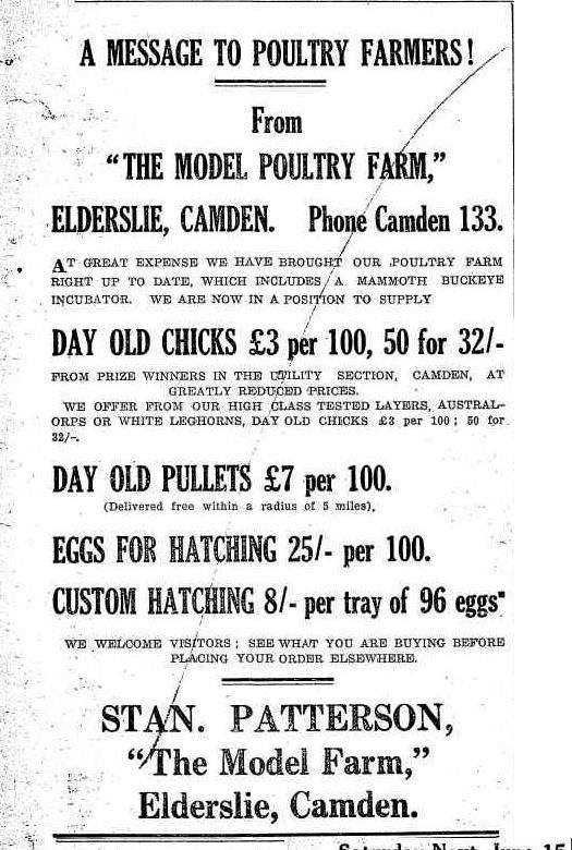 Camden Stan Patterson Poultry Farm Display Advert CN1935Jun13